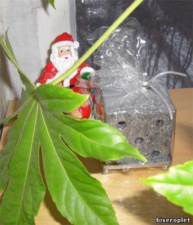 Дед Мороз с друзьями + Новогодняя свеча!